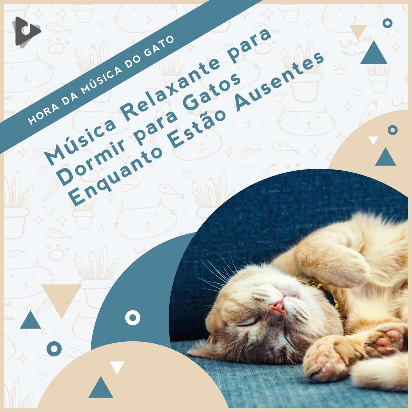 Música Relaxante para Dormir para Gatos Enquanto Estão Ausentes