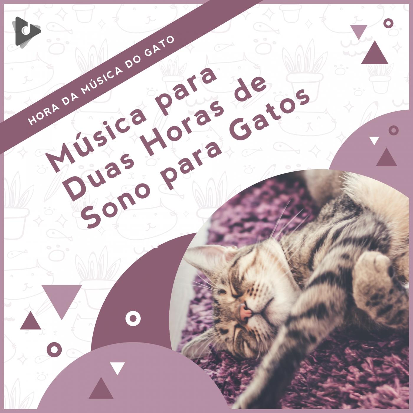 Música para Duas Horas de Sono para Gatos