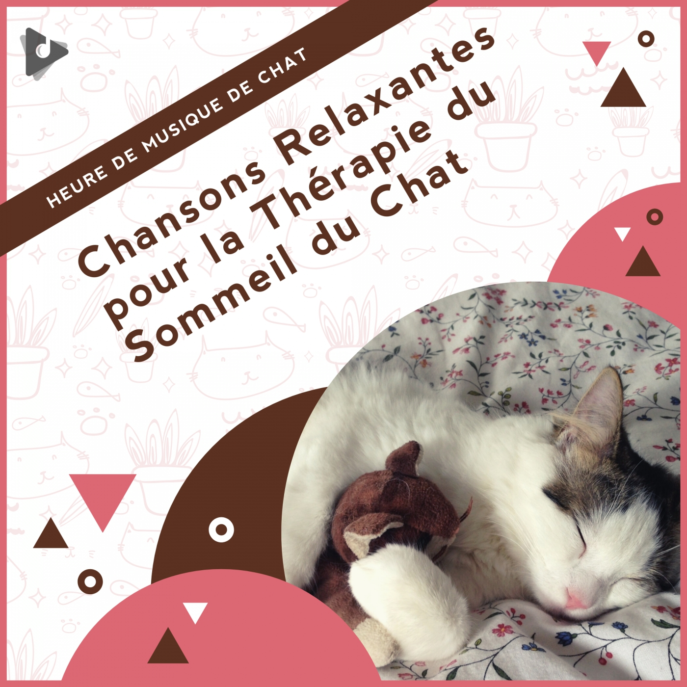 Chansons Relaxantes pour la Thérapie du Sommeil du Chat