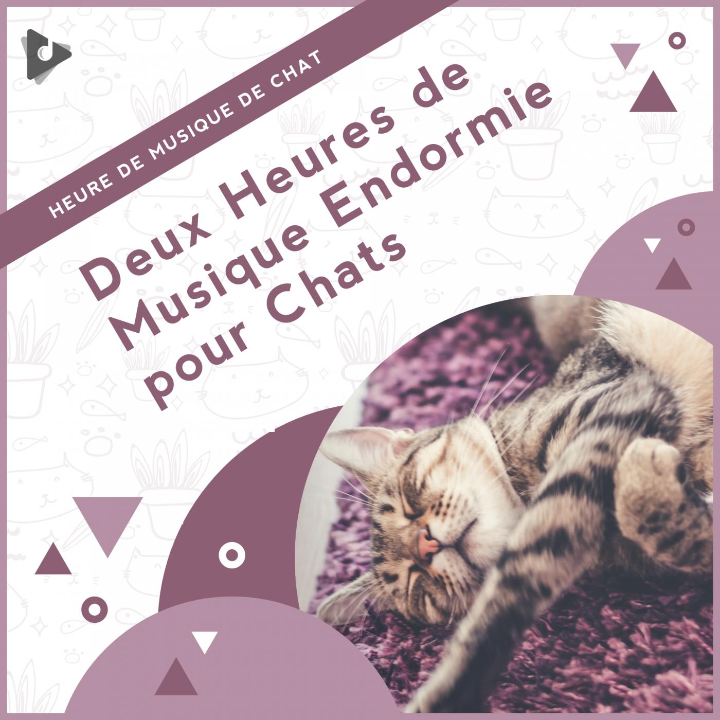 Deux Heures de Musique Endormie pour Chats