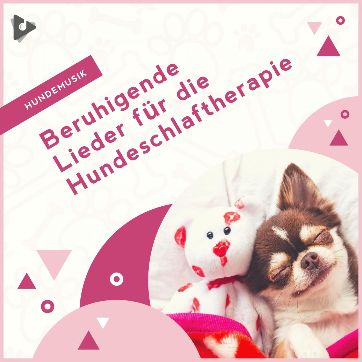 Beruhigende Lieder für die Hundeschlaftherapie