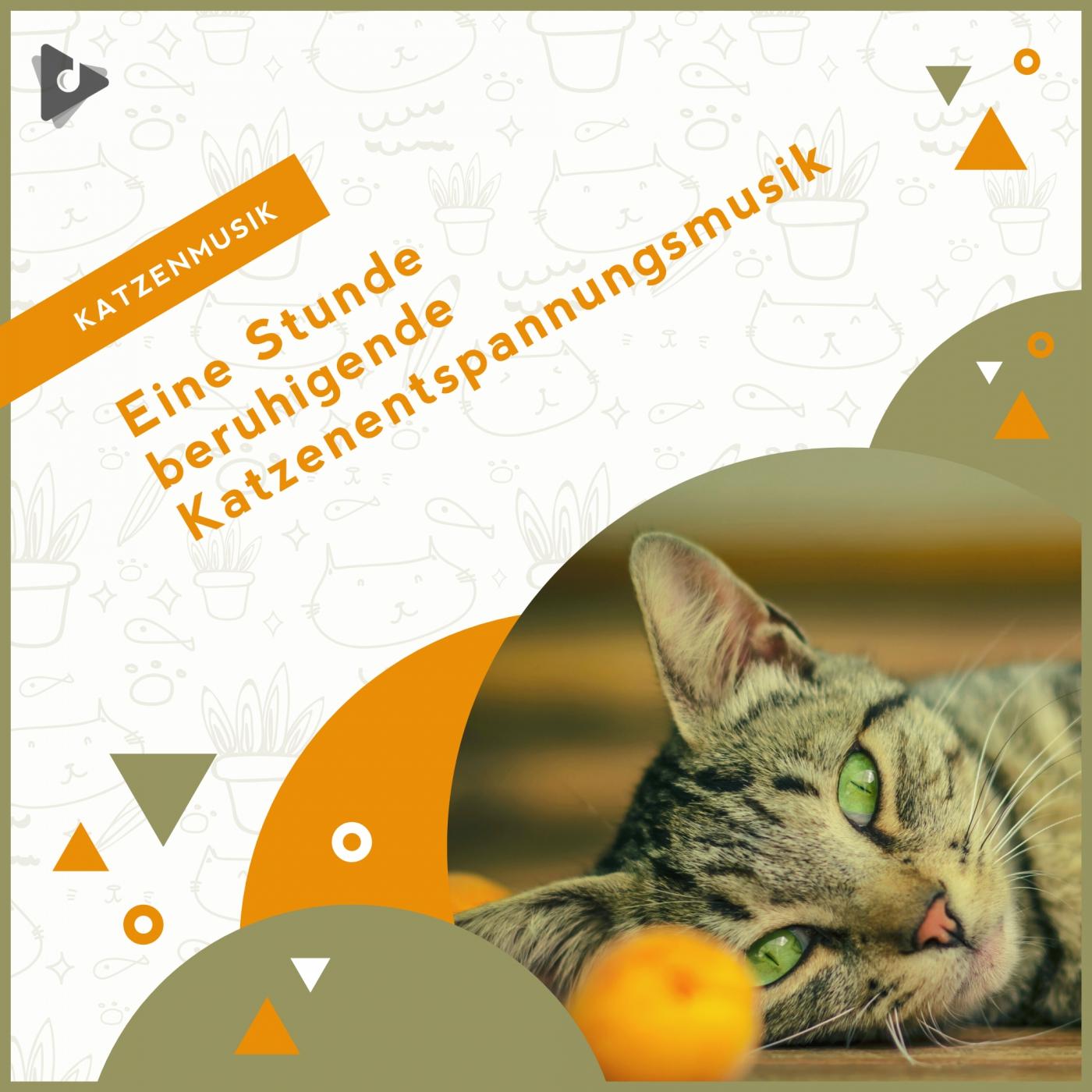 Eine Stunde beruhigende Katzenentspannungsmusik