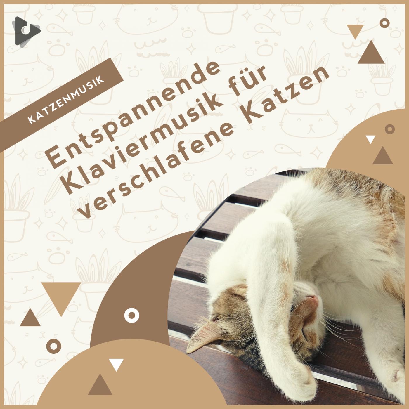 Entspannende Klaviermusik für verschlafene Katzen